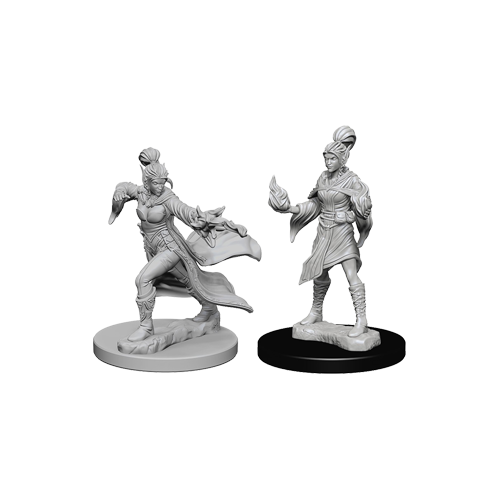 Набор Миниатюр Pathfinder Deep Cuts Unpainted Miniatures - Elf Female Sorcerer