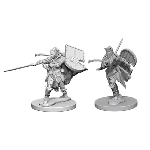 Набор Миниатюр Pathfinder Deep Cuts Unpainted Miniatures - Human Female Paladin